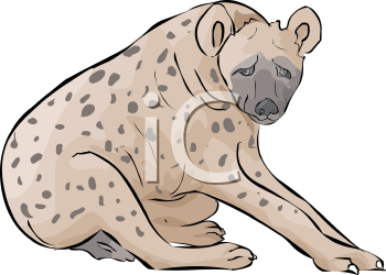 Spotted Hyena Sitting.