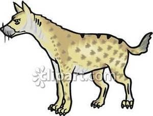 Hyena With Sharp Claws.