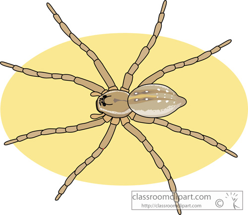 Spider Clipart : six_spotted_fishing_spider : Classroom Clipart.