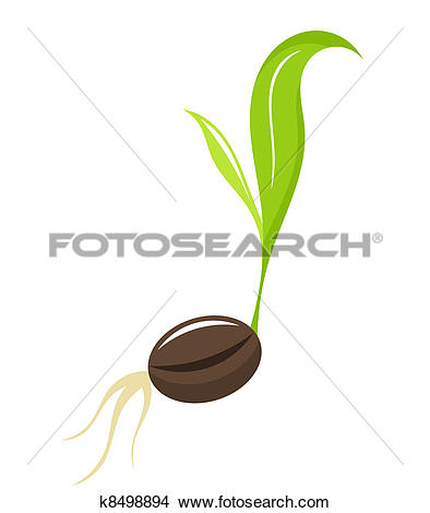 Clipart of Seedling.