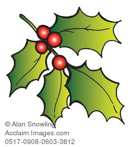 Holly Sprig Clip Art.