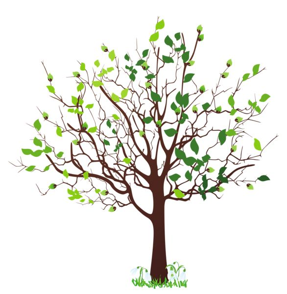 1000+ images about Family Tree ideas on Pinterest.