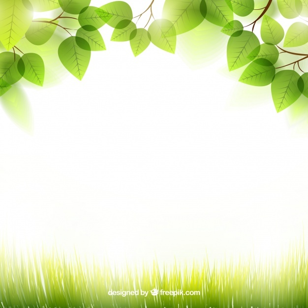 Free Spring background with leaves SVG DXF EPS PNG.