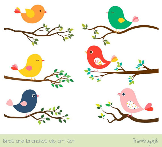 Cute bird clipart set, Tree branch clip art, Colorful spring.