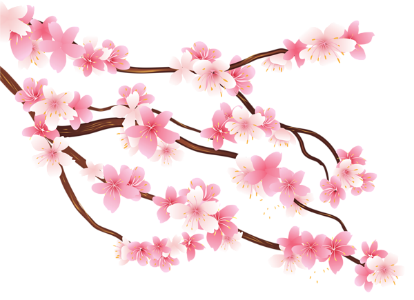 Spring branch clipart #12