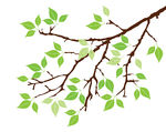 Spring tree branch clipart.