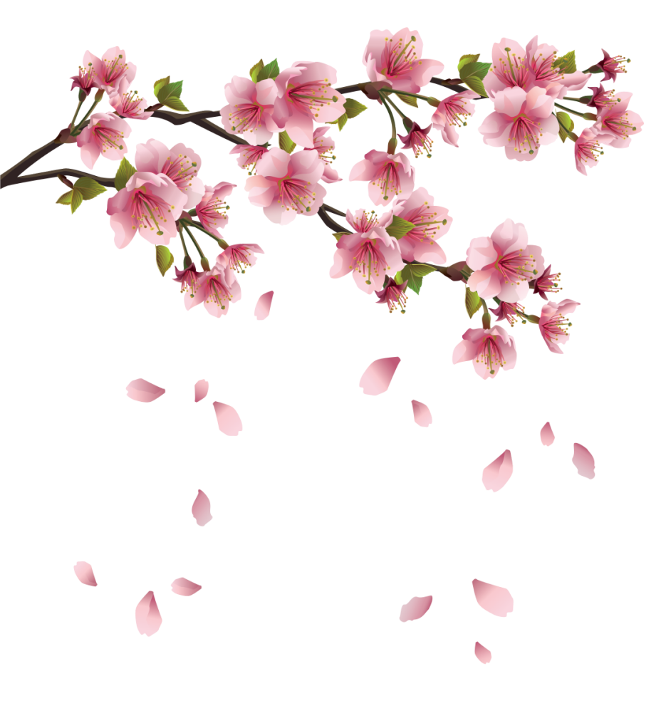 Beautiful Pink Spring Branch with Falling Petals PNG Clipart.
