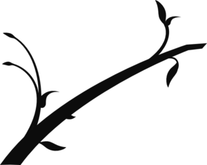 Clipart with branches.