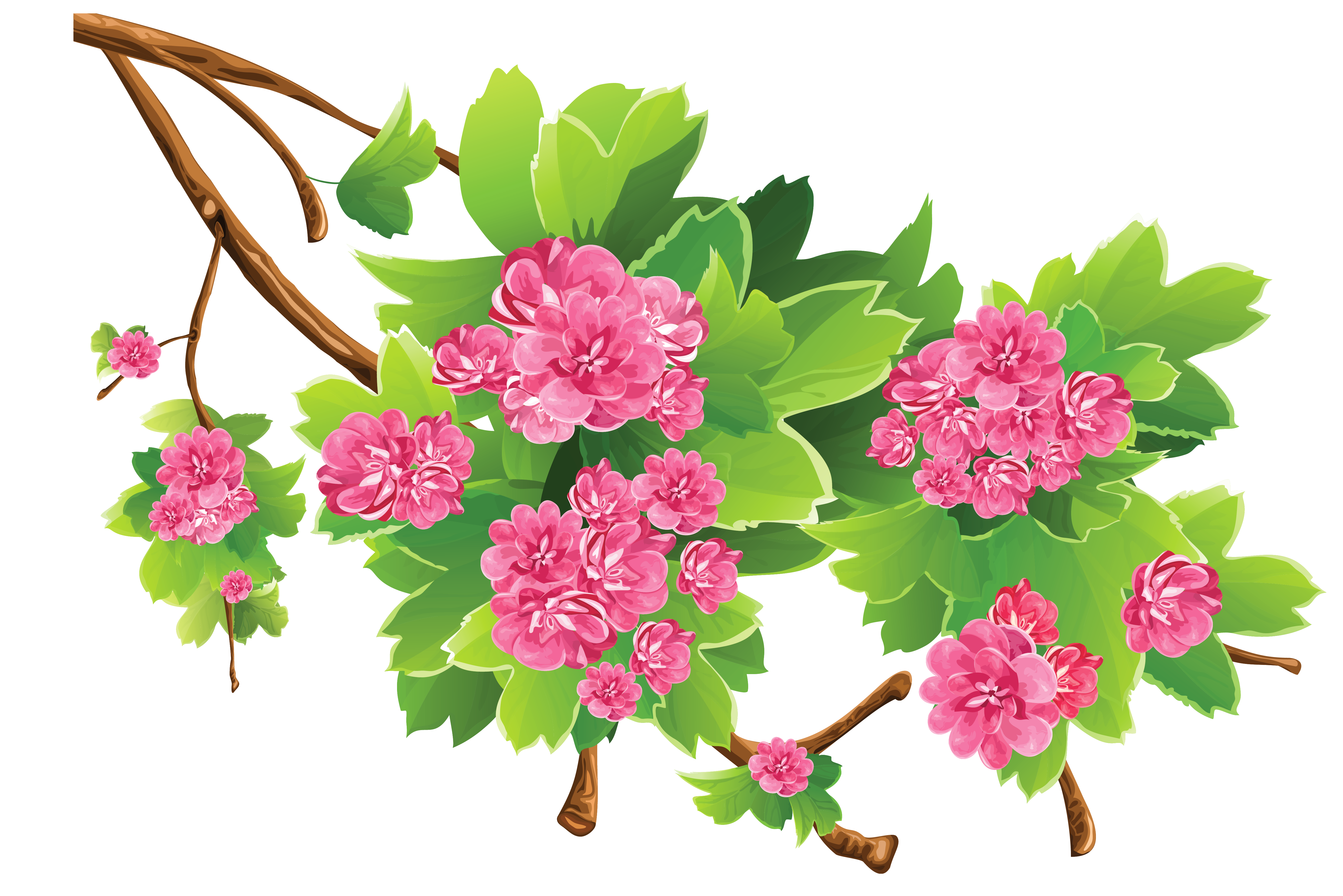 Spring Branch Transparent PNG Clipart Picture.