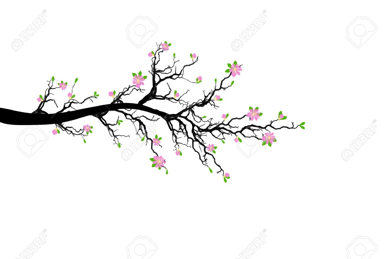 Spring branch clipart #13