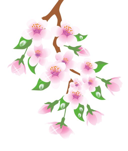 Spring Branch Pink PNG Clipart.