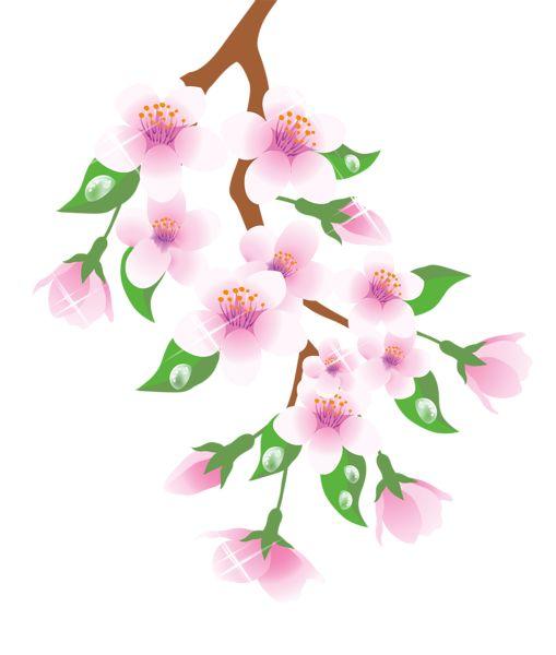 Spring branch clipart #19