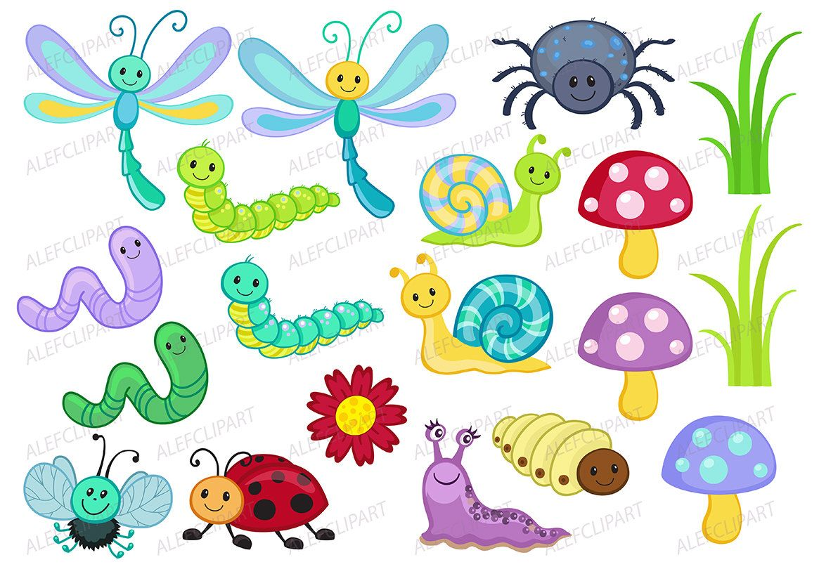 Bugs clipart spring, Bugs spring Transparent FREE for.