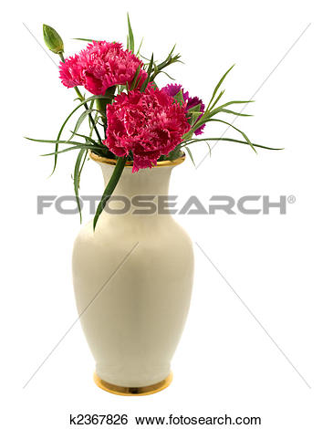 Stock Images of spring red pink carnation flowers in a vase.