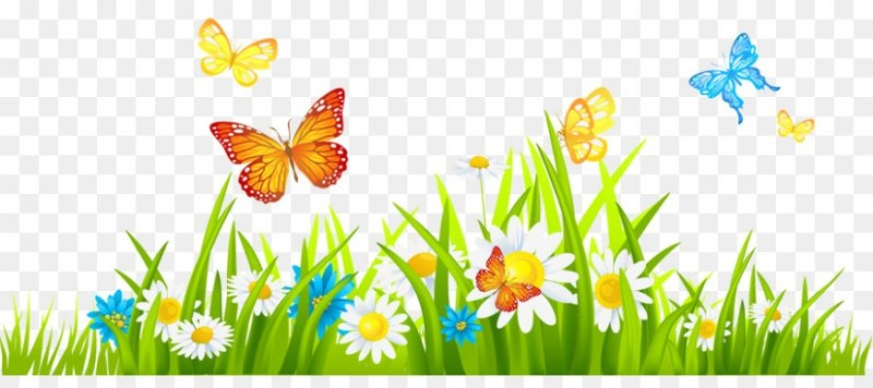 Flower Free content Spring Clip art.
