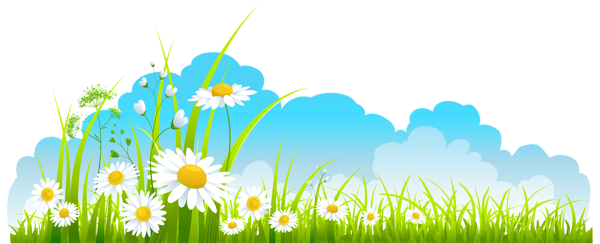 Spring Decor Sky Grass and Camomile PNG Clipart.