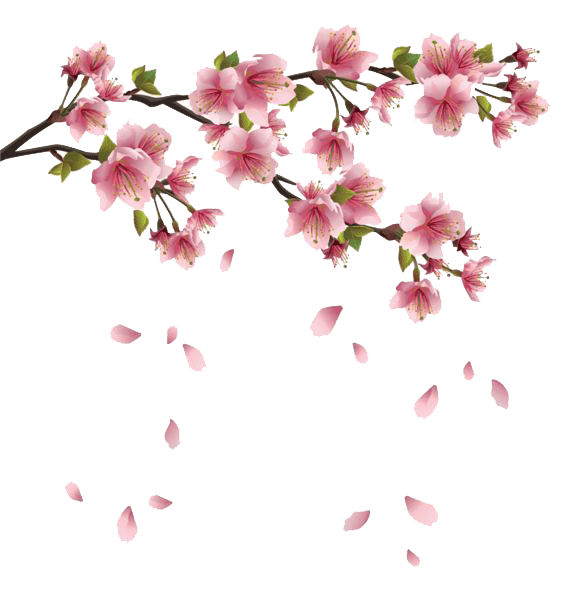 Spring Flowers Branches transparent PNG.