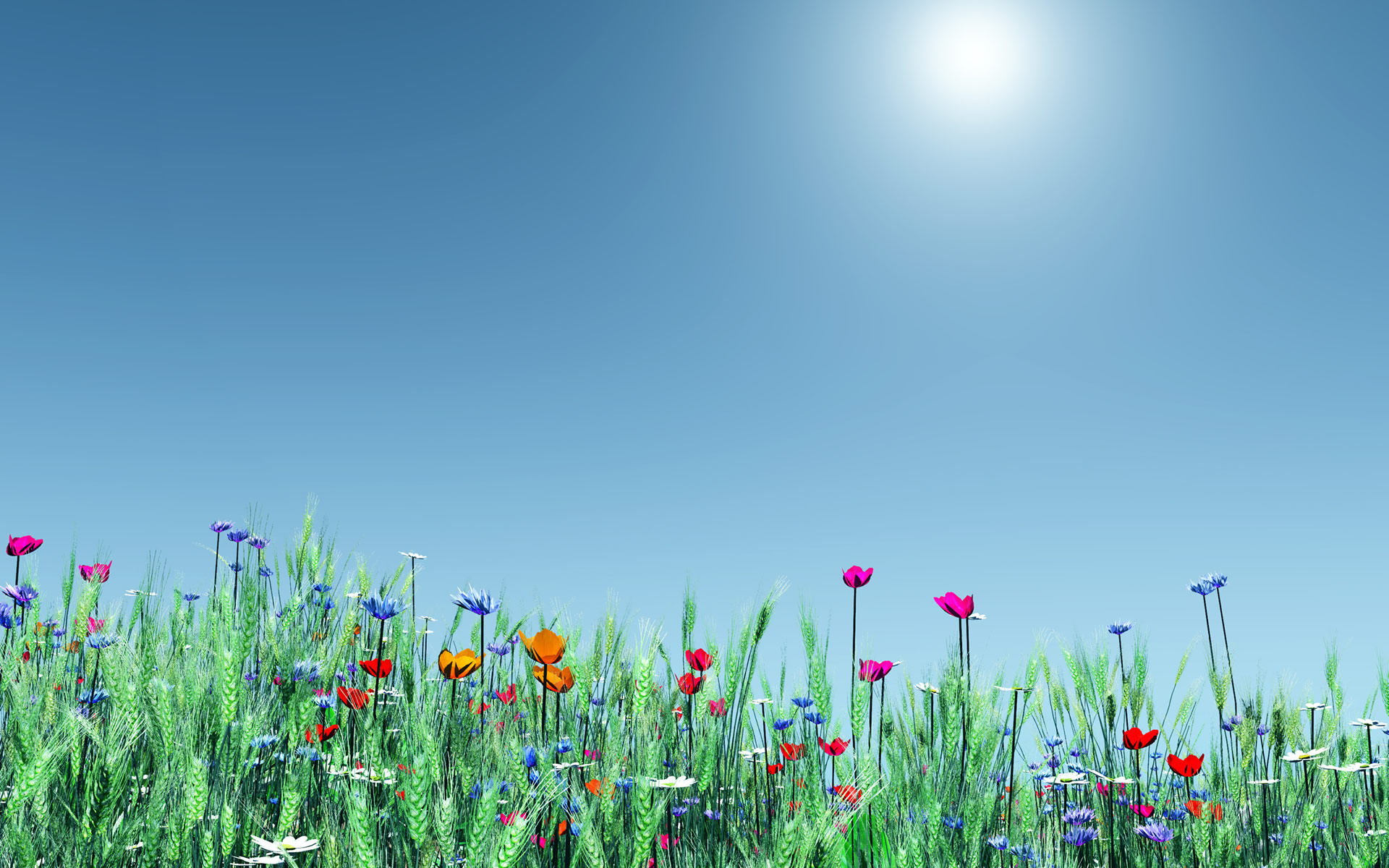 Spring Flowers Backgrounds.