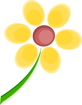 Spring, Flowers.
