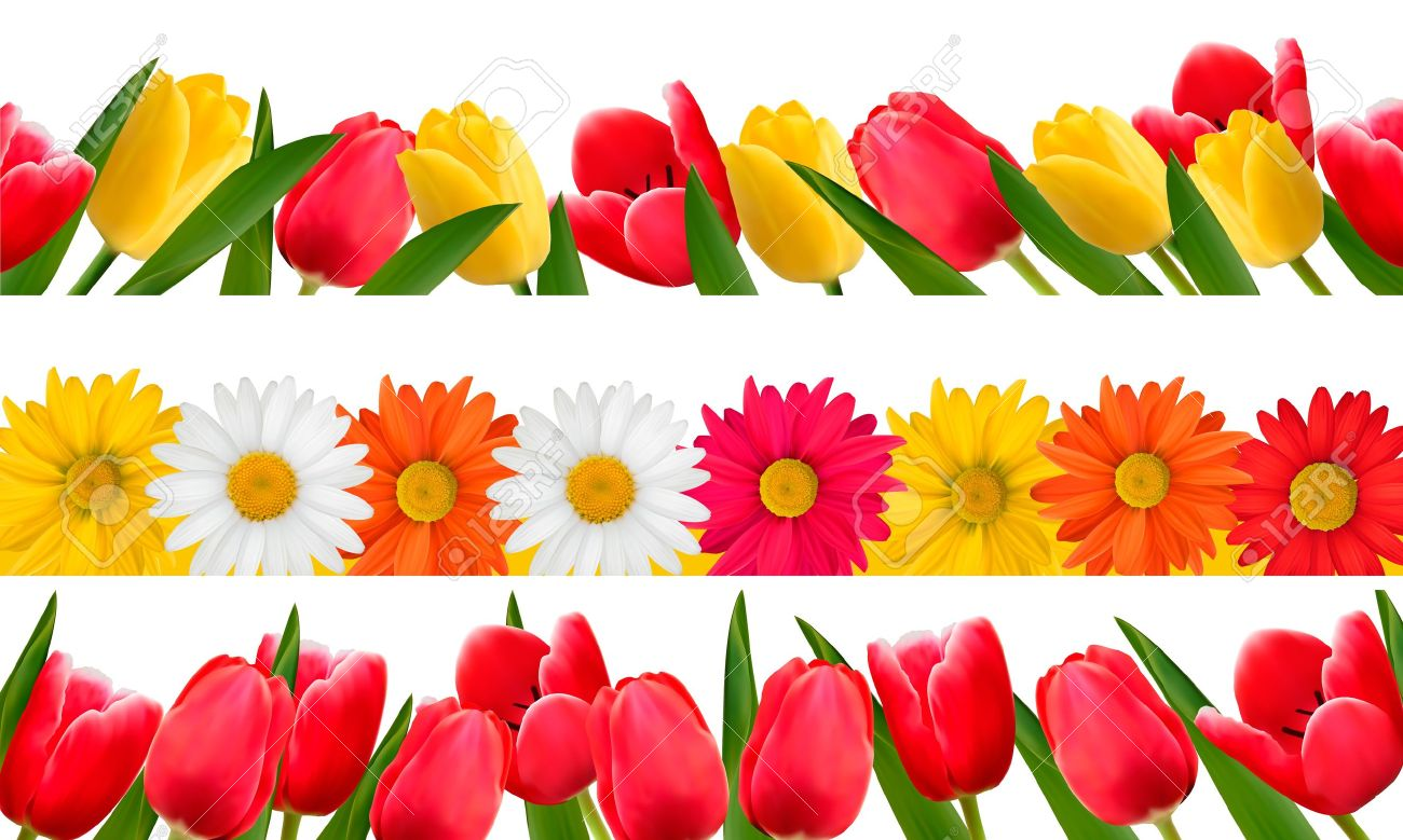 spring flowers page breaks clipart 20 free Cliparts ...
