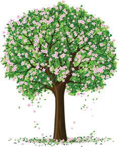 Spring Tree PNG Clipart Picture.