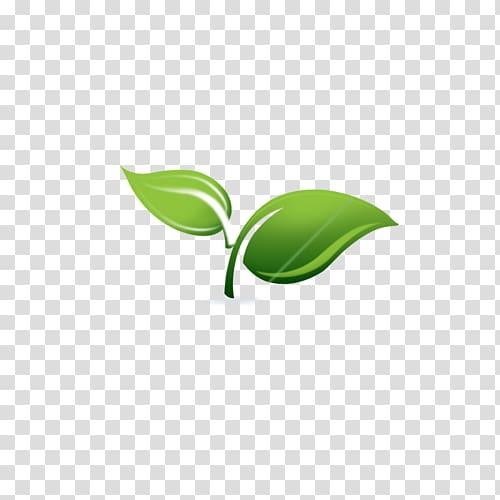 Spring Framework Spring & Sprout Support Services, LLC.