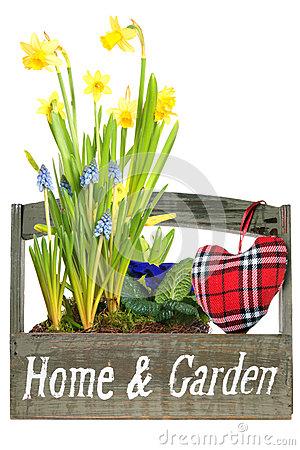 Heralds Of Spring Royalty Free Stock Photos.