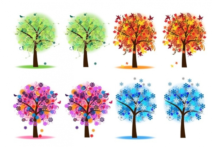 four seasons trees clipart clip art spring summer winter fall with.