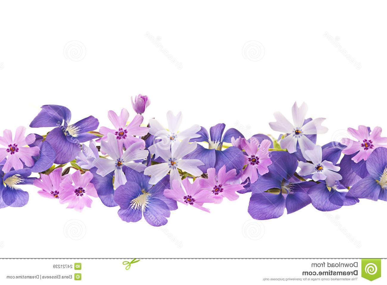 Spring Lavender Clipart Clipground