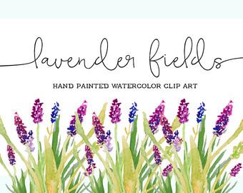 lavender clip art.