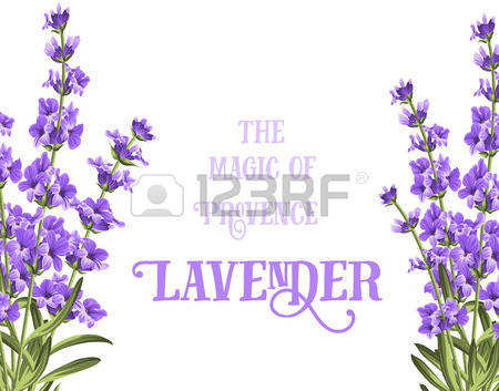 49,221 Spring Flowers Border Stock Vector Illustration And Royalty.