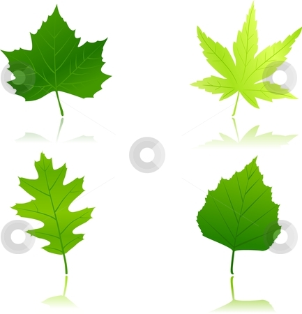 Spring Leaves Clip Art.
