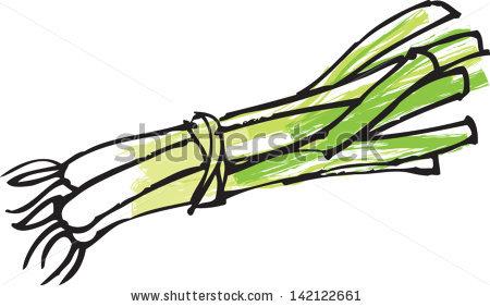 Spring Onion Stock Vectors, Images & Vector Art.