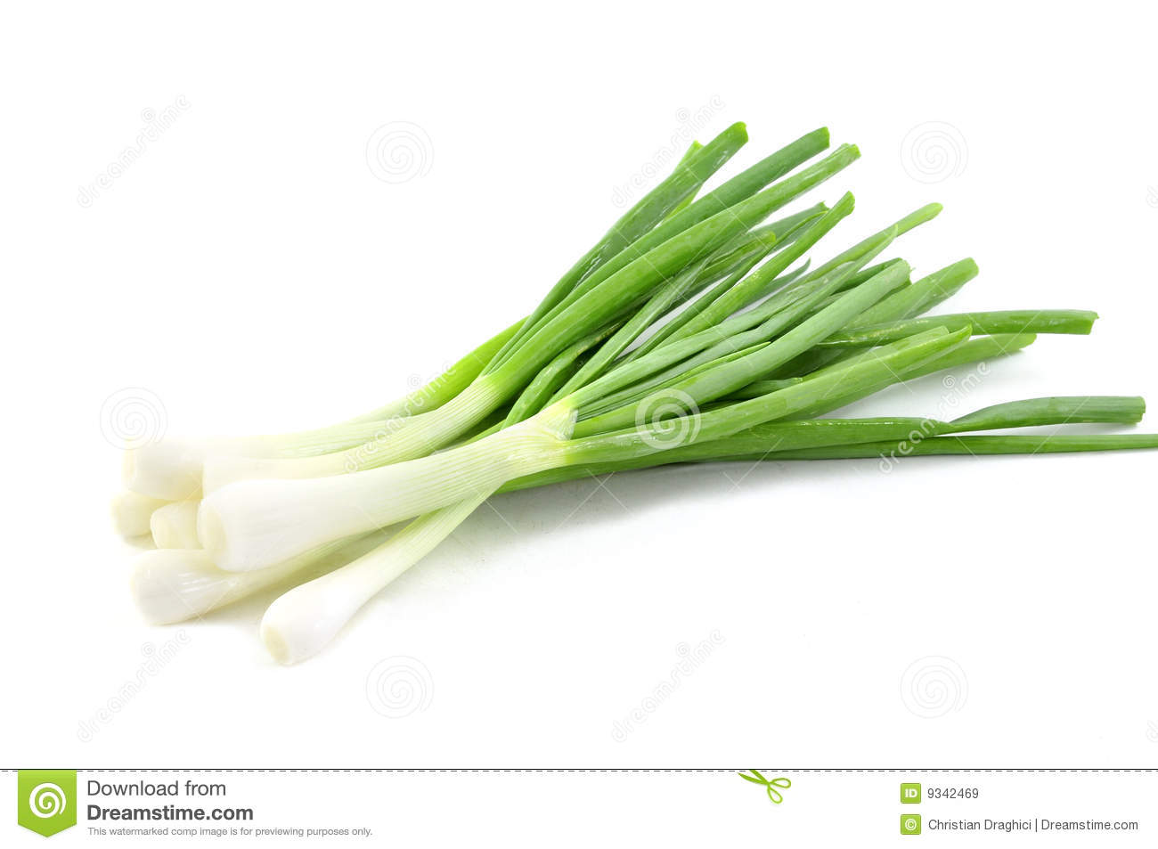 Fresh Green Spring Onions Royalty Free Stock Images.