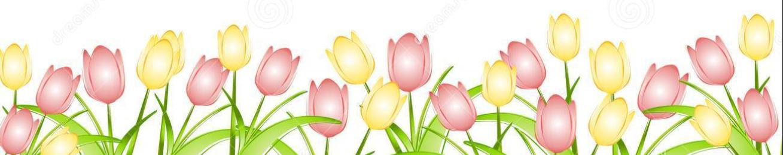 Spring PNG Transparent Images.