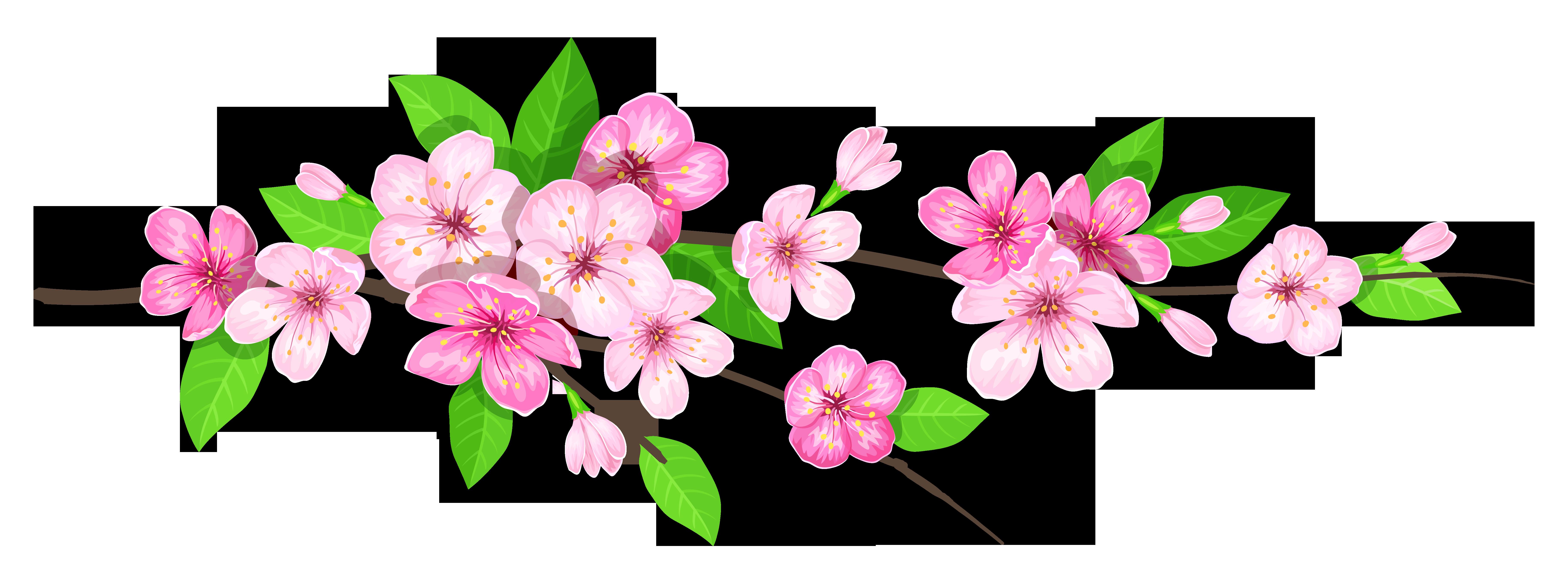 Pink Spring Branch PNG Image.