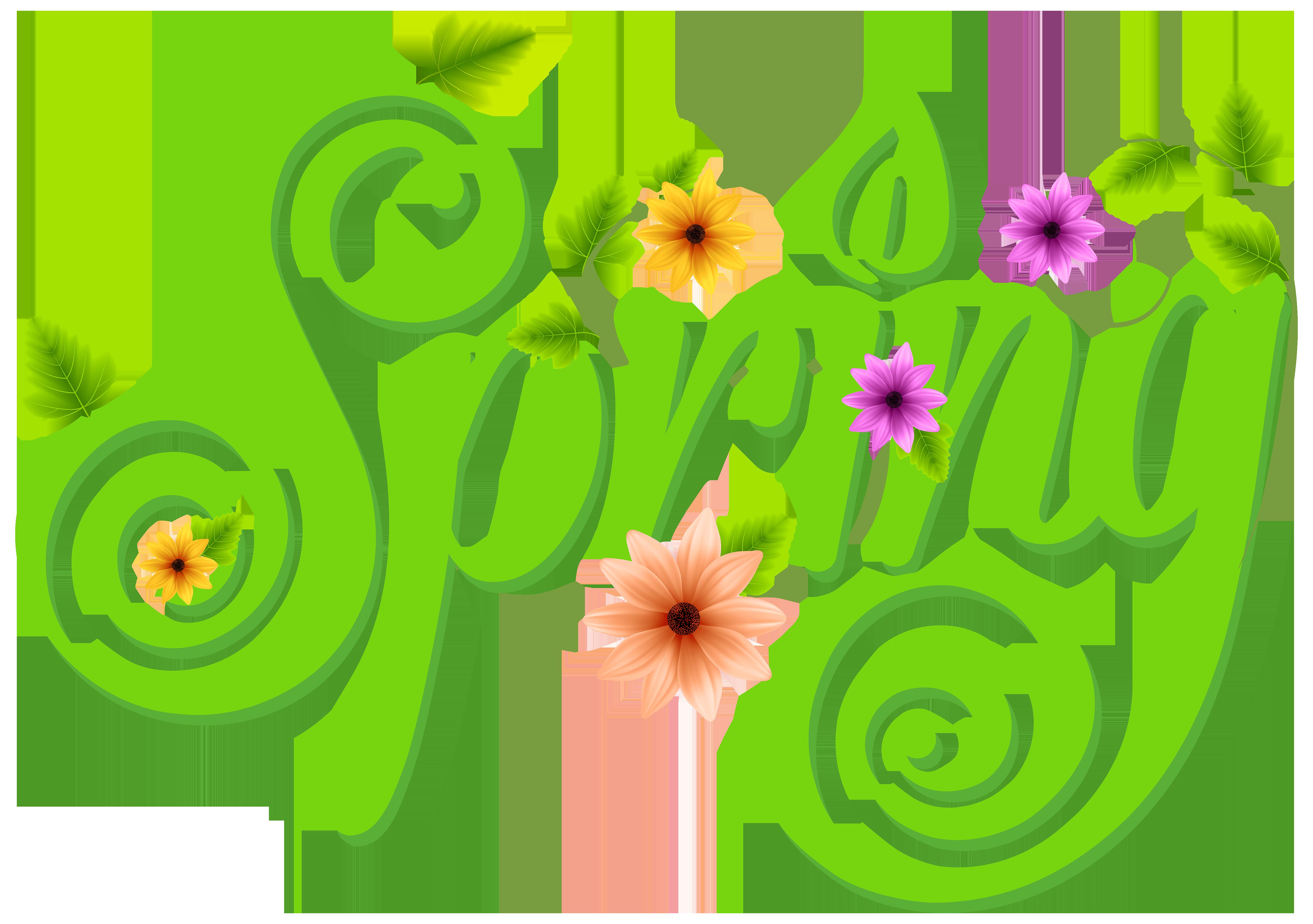 Spring Decoration PNG Clip Art Image.