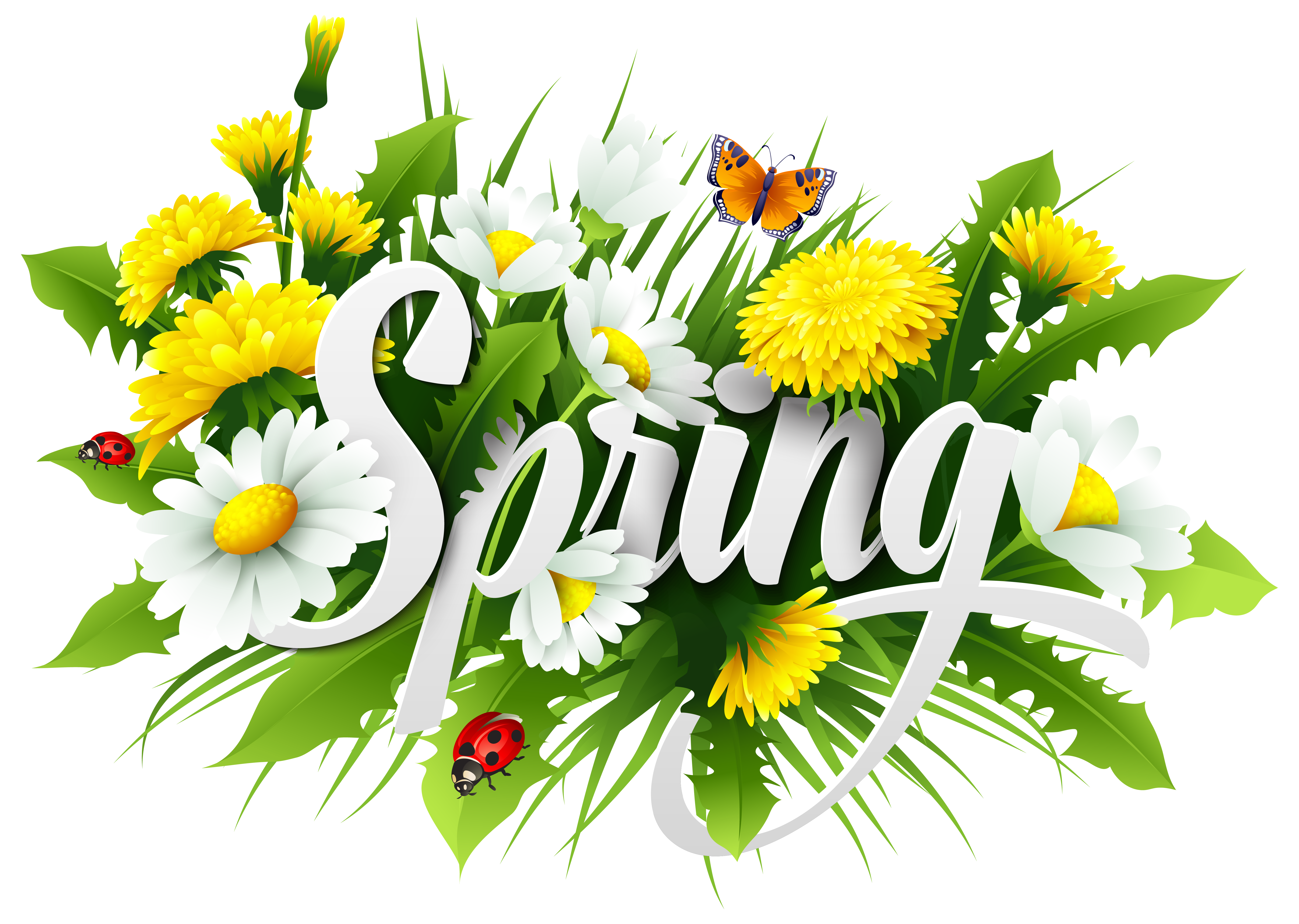 Spring Decorative Image PNG Clipart.