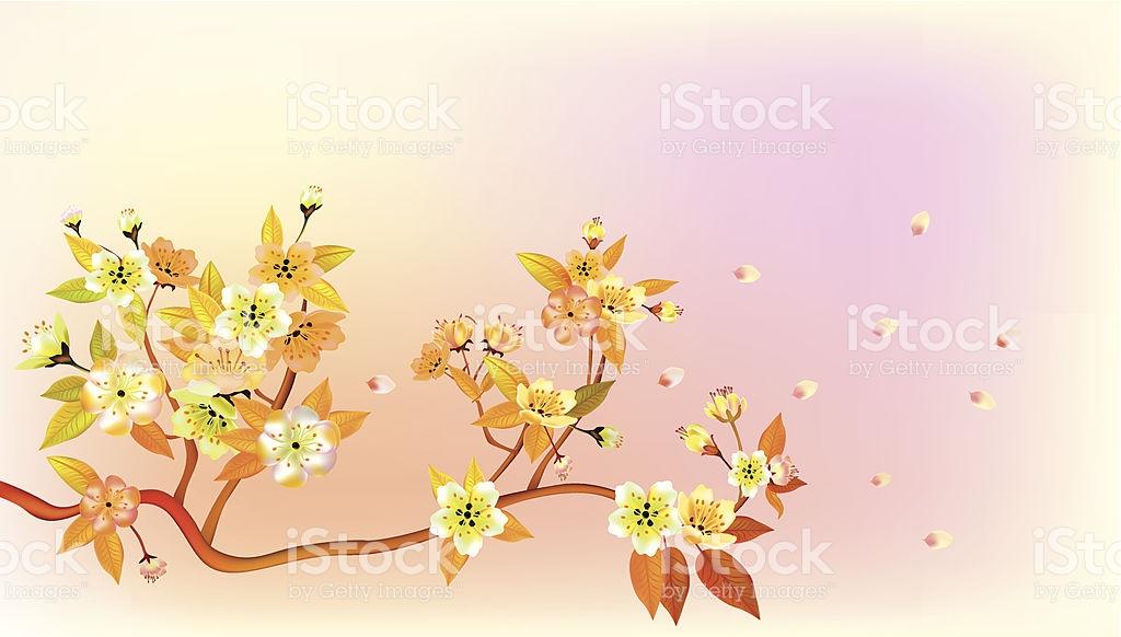 Sakura Spring Postcard stock vector art 506131101.