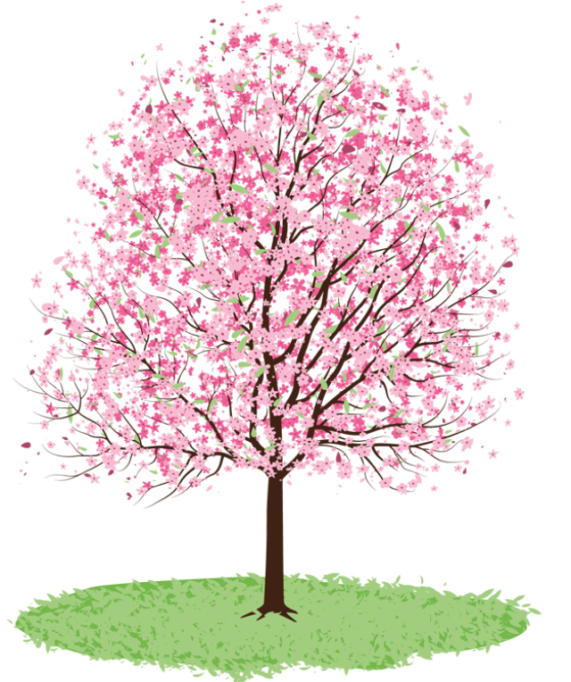 Free clipart spring tree.