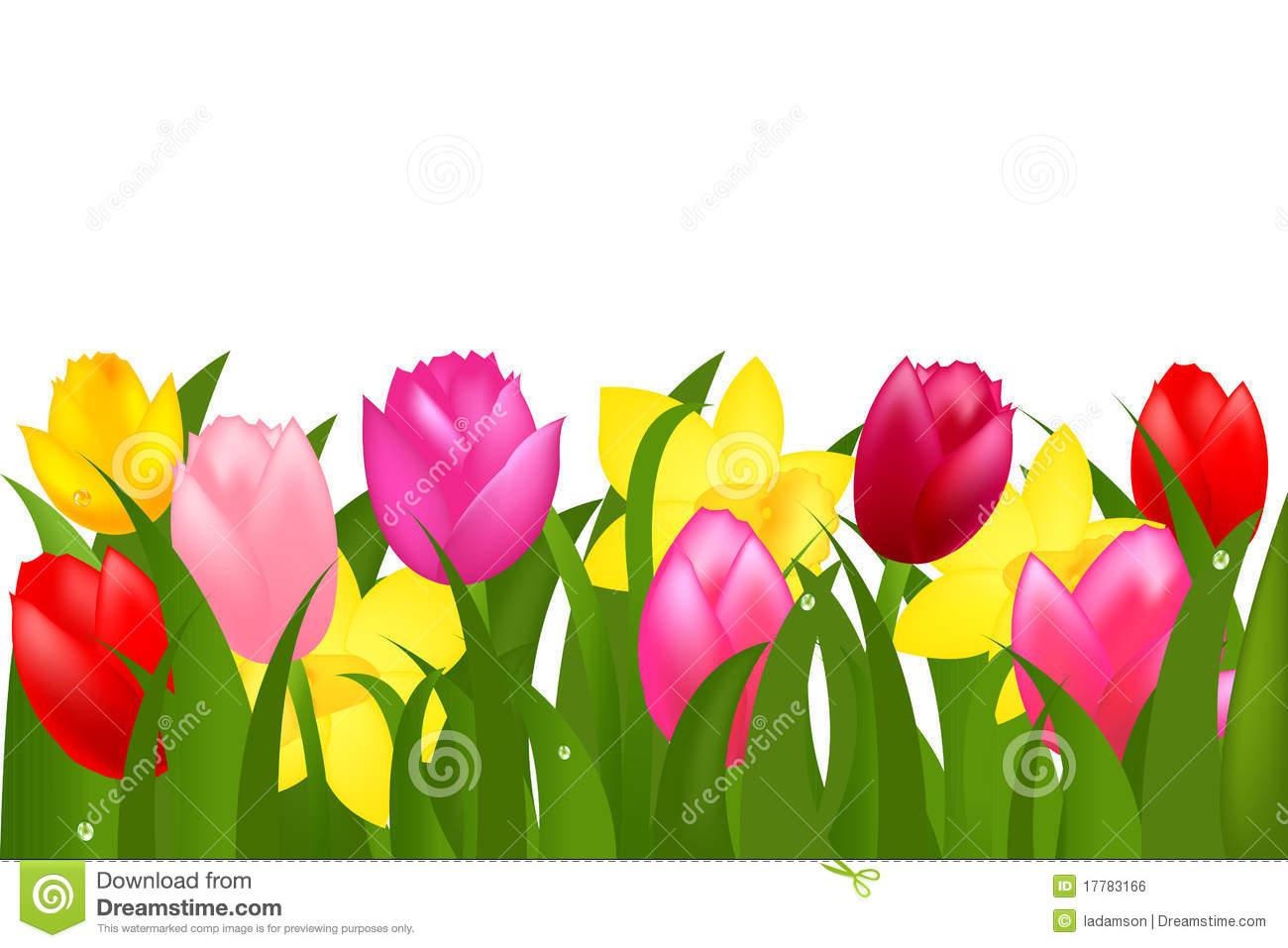 Spring Tulips Border Clipart.