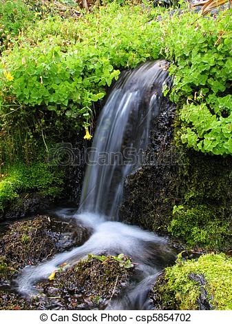 Stock Photo of flowing spring.