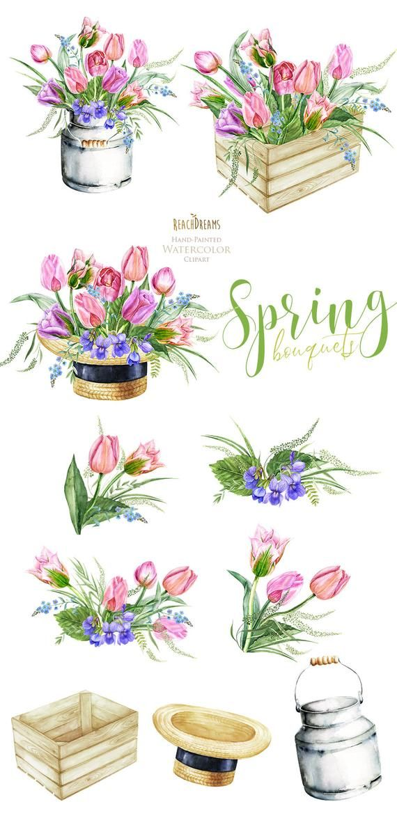 Watercolor floral clipart, tulips, bouquets, frame, spring.