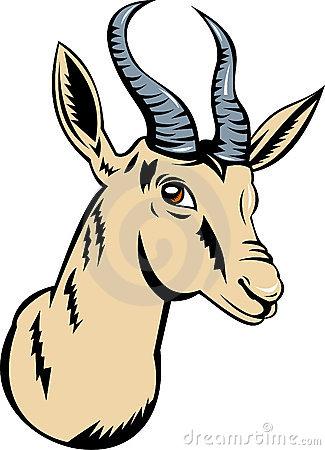 Springbok Stock Illustrations.