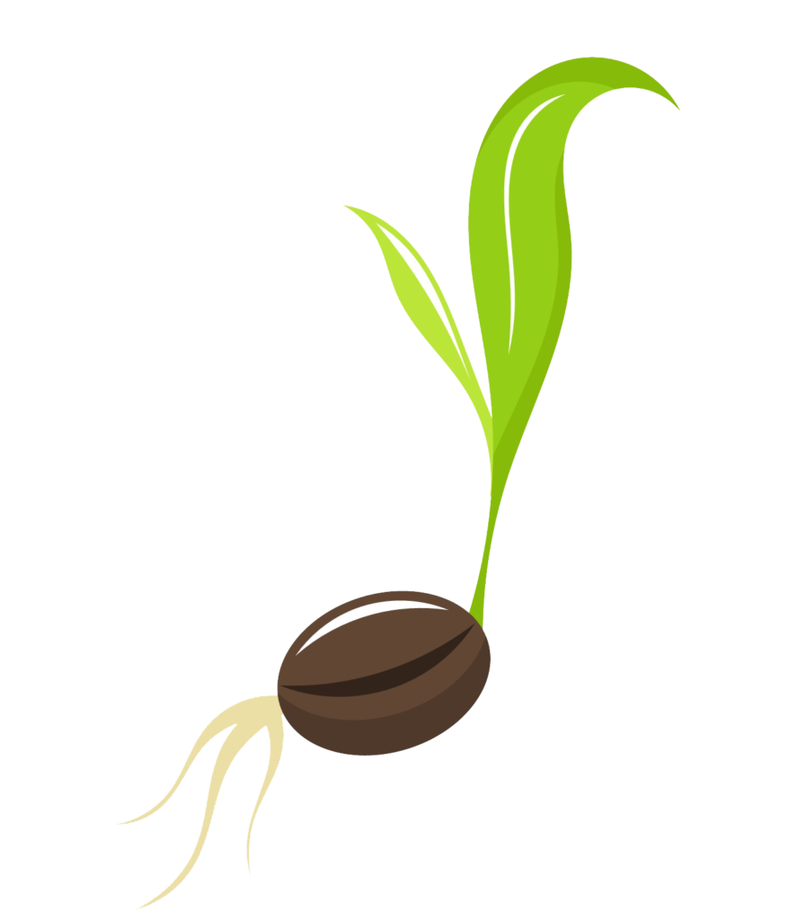 Seed sprout clipart clipart images gallery for free download.