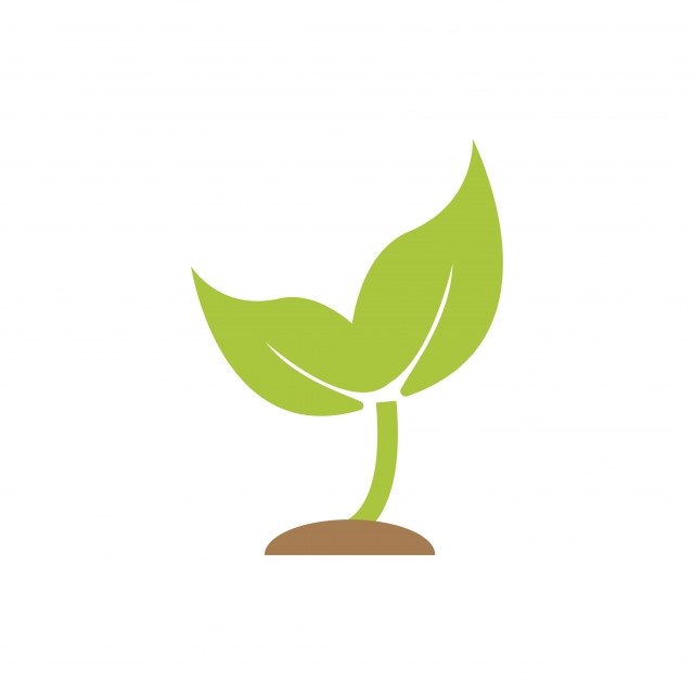Sprout Plant Graphic Icon Design Template, Logo, Symbol.