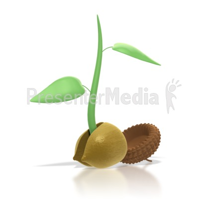 Seed Sprouting Clipart.
