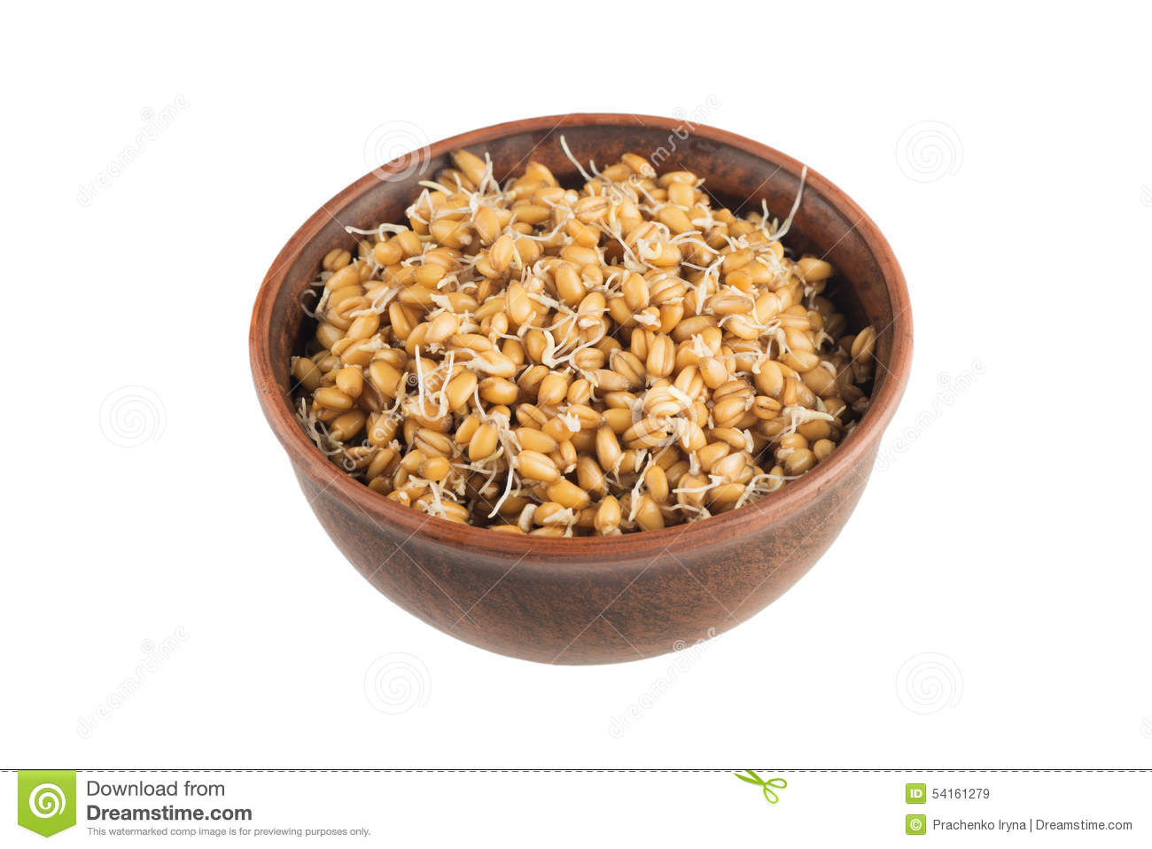 Raw Sprouted Wheat Germ Isolated On White Background Stock Photo.