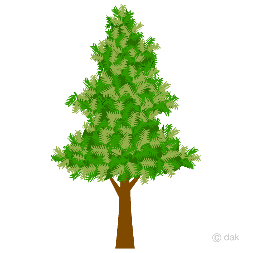 Free Fir Tree Clipart Image|Illustoon.