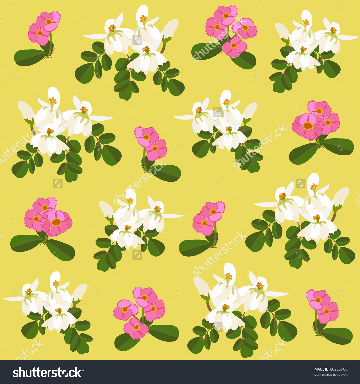 Moringa Tree And Spurge Flowers Stock Vector Illustration 80225980.